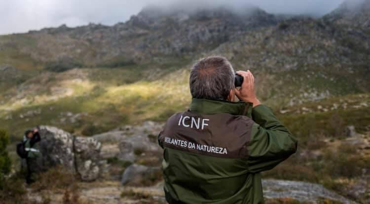 Celebrou-se mais um Dia Mundial do Vigilante da Natureza